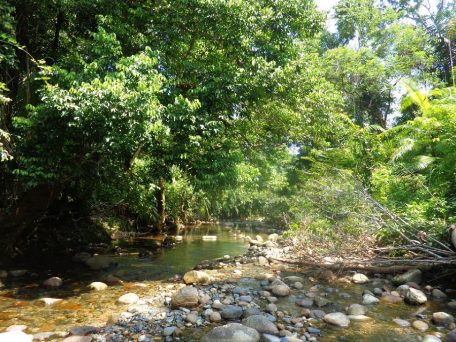 cascade sumatra