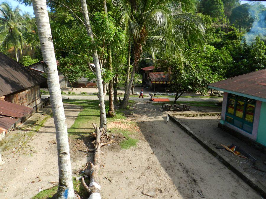 sumatra  quelques jours chez ricky