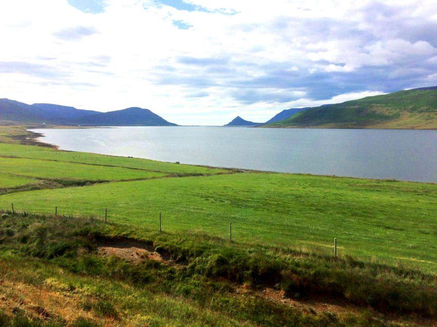 fjords islande