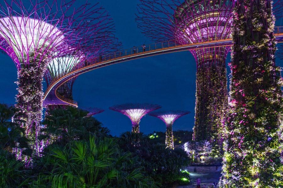 garden rhapsody singapore